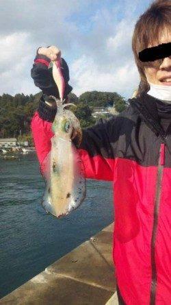 新井崎で今年初エギング釣行☆雨の中4ハイキャッチ