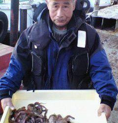 沖一文字でのタコ釣り、400g〜600gのタコ4杯の釣果