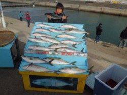 マリーナシティ海洋釣り堀 ハマチ18尾で満足釣果