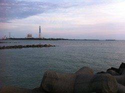 日高川河口でウキ釣り、ソゲの嵐でした・・・