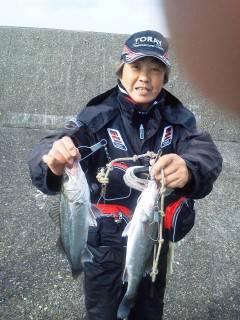 好★釣 23日岸和田エビ撒き釣果