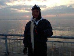 南芦屋浜ではタチウオまだ釣れています!