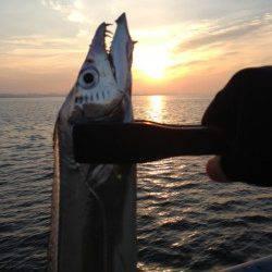 芦屋浜、ワインドで85cmの太刀魚GET!ヒットタイムは7時15分♪