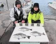 黒島の磯 チヌ〜45cm3匹の釣果