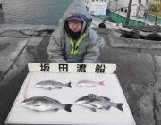 黒島の筏 チヌ&マダイ連日釣果あり♪