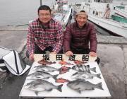 鷹島のカンドリ、42cmのグレやガシラ・サンバソウ・チヌの釣果
