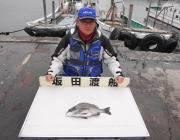 黒島の磯でフカセ釣り、良型チヌ釣れています♪