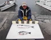 黒島の磯、さまざまな魚種が楽しめますヨ!