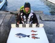鷹島のカンドリにてチヌの釣果