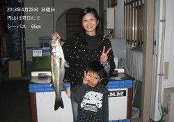 KIDS釣果♪円山川河口でシーバス!