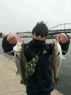 大阪南港でエビ撒き釣り、最終釣果はハネ10匹オーバー