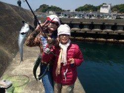 堺漁港 サビキ&カゴ釣りでガシラ・イワシ・小サバで満足釣果☆