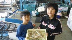埴田漁港、お子様のチョイ投げキス釣果☆