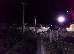 ヨットハーバーで30分程のメバリング釣行、最大26cmのメバル!