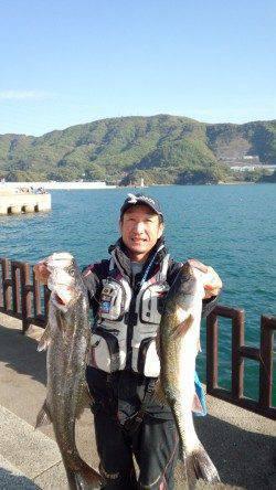 マリーナシティ海釣り公園 イワシの飲ませ釣りでスズキ62&68cm!