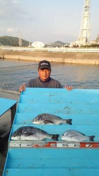 マリーナシティ海釣り公園でブッコミ釣り★まだまだ釣ります!★