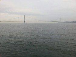 大蔵海岸 メバリングでガシラ15cmマグバイトのワーム使用☆