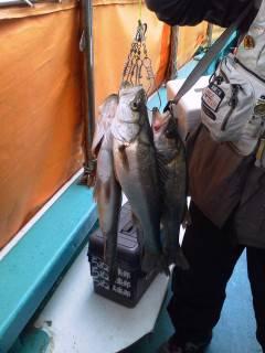 【天気は芳しくありませんが…】沖の北でウキ釣り