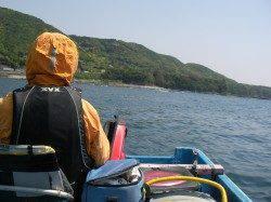 初めての江須でかかり釣り、多魚種釣れました♪