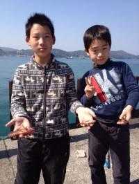 マリーナシティ海釣り公園、釣り少年も胴突きでガシラGET!