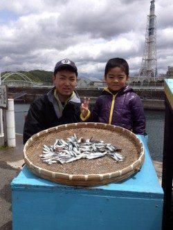 マリーナシティ海釣り公園 サビキのイワシはいぜん好調