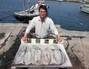 黒島の磯 エギングでアオリイカ〜1.7kg5ハイ