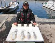 黒島の磯 ヤエンのアオリイカ釣果