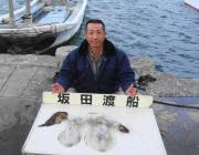 黒島の筏 エギングでアオリイカ0.7〜1kg