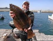 黒島の磯、キロアップのアオリに、62cmのヒラメ!!!