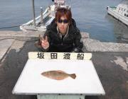黒島の磯 ヤエンでヒラメ42cm&アオリイカ1.1kg