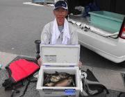 黒島の磯 アイゴ20〜36cm50匹の好釣果