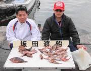 黒島の磯 サバの切り身をエサにガシラ32匹