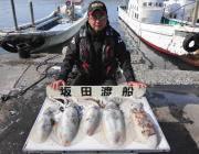 黒島の磯 ヤエンでアオリイカ〜2.4kg5ハイ