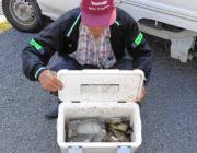 黒島の磯 ウキ釣りでアイゴ32匹