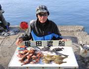 黒島の磯 ガシラ・カワハギ・チヌ・グレなどの釣果