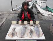 黒島の磯 ヤエンでアオリイカ〜1.9kgの釣果