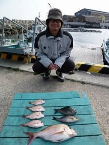 神谷沖一文字外向き カゴ釣り釣果