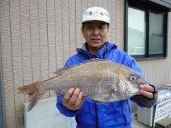 湯浅の磯 フカセで真鯛53cm