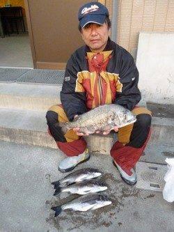 湯浅の磯、良型チヌをフカセ釣りでキャッチ♪