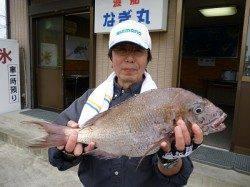 女性釣り師が見事マダイGET!湯浅でフカセ