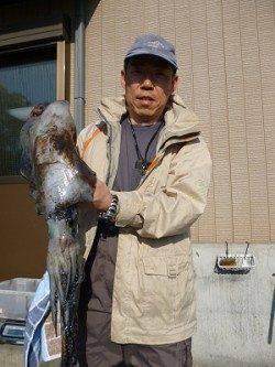 湯浅の磯でのヤエン釣り、胴長42cm・2.58kgのアオリ!!!