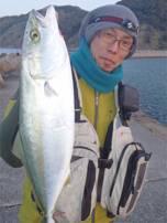 ベイト指名で狙う回遊魚!! 【吉田聡氏連載記事No.07】