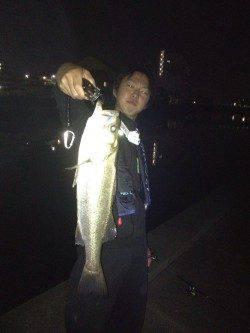和歌川河口、本日の釣果は全てトゥイッチでの釣果