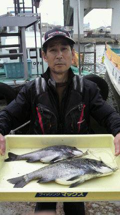 岸和田一文字 良型のチヌ釣れてます