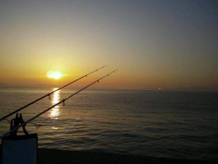 大川漁港にて自己新記録のアナゴ♪
