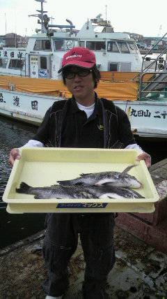 岸和田一文字 紀州釣りでチヌ〜38cm3枚