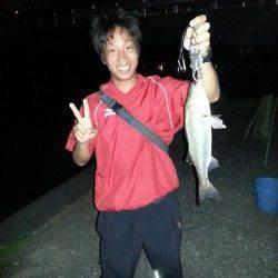 和歌川河口 チニングでチヌ6匹&シーバス5匹!満潮から約1時間チヌの入れ食い☆