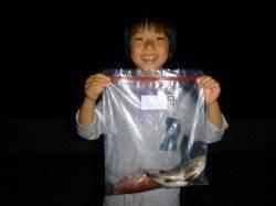 今日もスルメイカ釣れてます♪兵庫突堤夜のRT