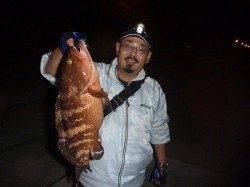 神戸空港で40cmの高級魚アコウを発見!!
