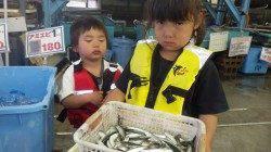 初めての釣りでおっかなびっくり、堺漁港にてサビキ釣り